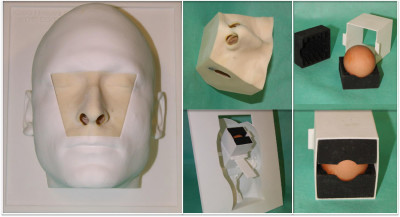 A basic model for training of microscopic and endoscopic transsphenoidal pituitary surgery- the Egghead